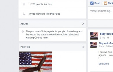 LIKES ON PAGE GROWING