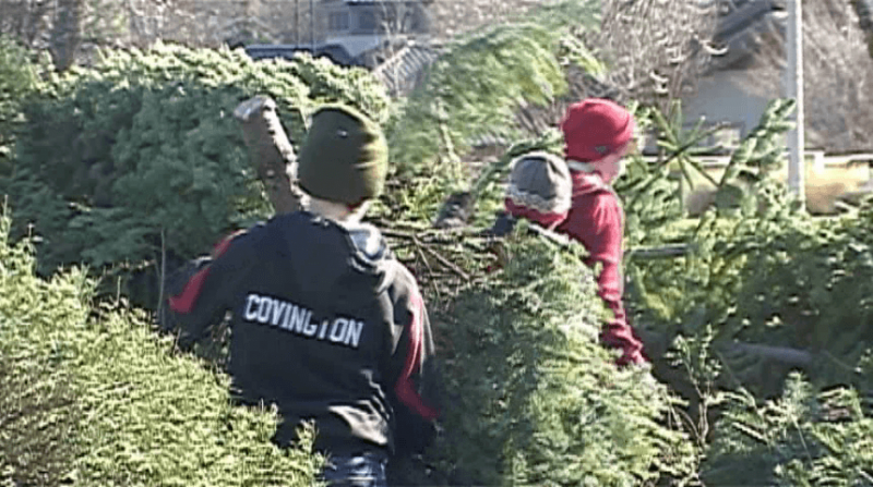 boy scouts christmas tree pick up continues in medford kobi tv nbc5 koti tv nbc2