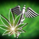 Medical marijuana workshops held in Josephine Co.