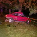 Man dies after car crashes into tree in Rogue River