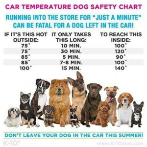 0603 high temperatures chart