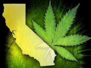 0629 california marijuana