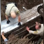Dog rescued from overturned car in New Mexico