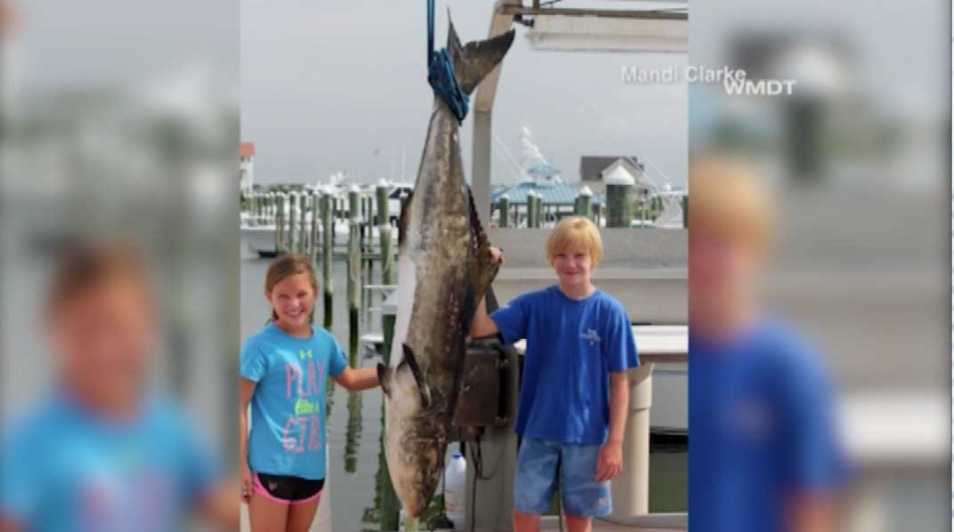 9 year old maryland girl reels in 94 6 pound fish kobi for 94 1 the fish