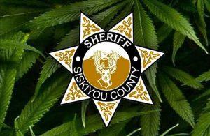 0720 Siskiyou County Marijuana