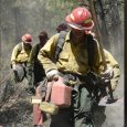 Audit says wildfires negatively impacting ODF employees