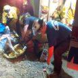 Emergency responders rescue man who fell down embankment