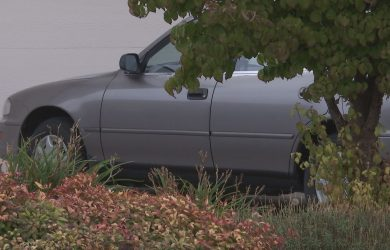 car-theft-image