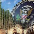 Trump administration imposes tariff on Canadian lumber