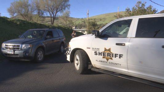 Dogs Die In Car Klamath Falls