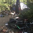 Police, veterans organization participate in greenway sweep
