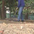 Volunteers clean Phoenix Pioneer Cemetery