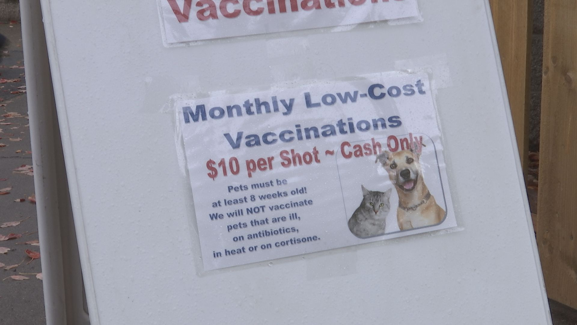 Even Dogs Dont Like Having To Go To The Doctor To Get Their Shots However Jackson County Animal Services Offered Low Cost Vaccinations Today To Help