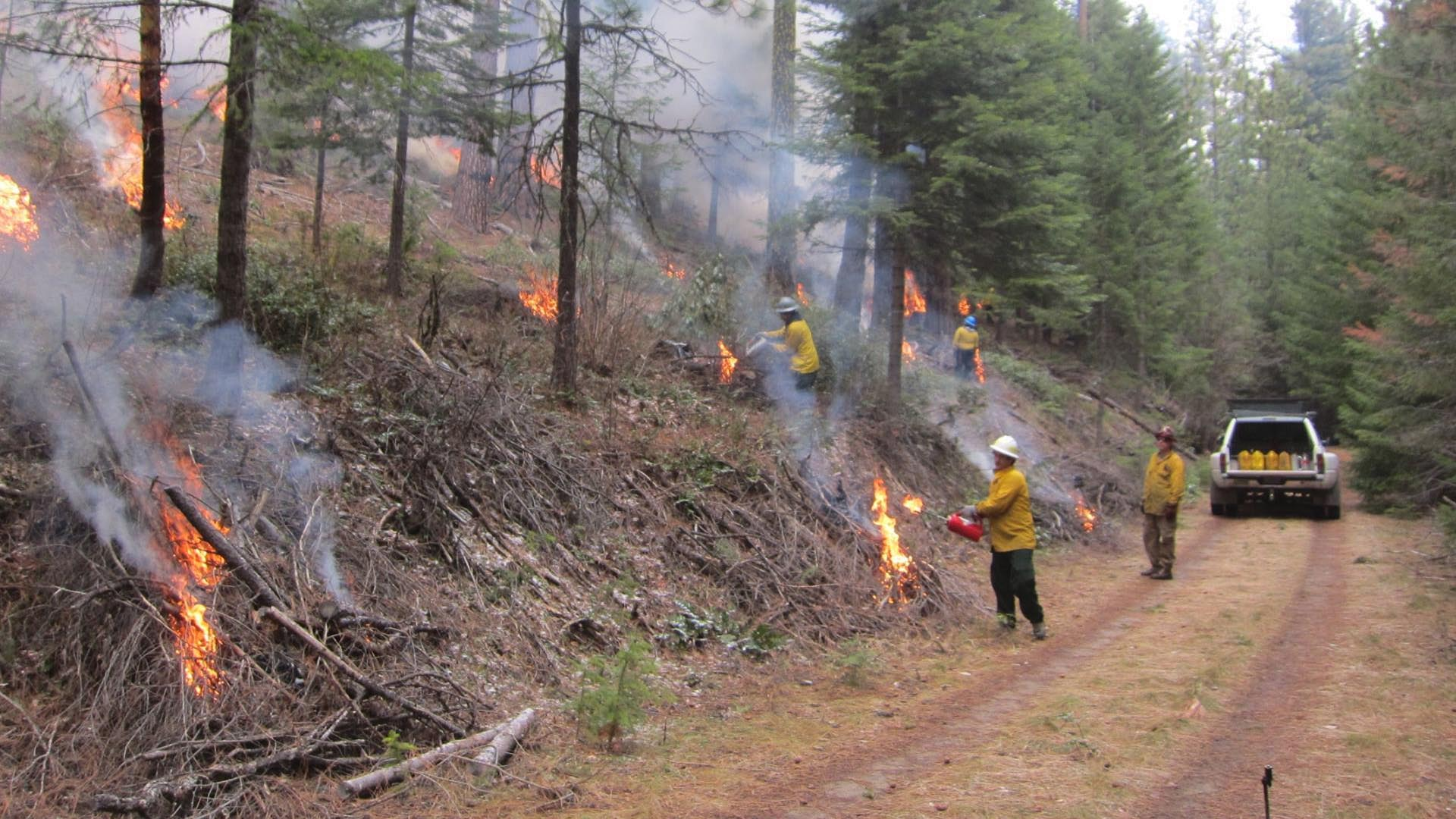 controlled burns Prescribed burning 2 backfire: a fire set to spread against the wind to burn more slowly and remove more vegetation and litter backfires are often used to.