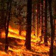 Crews battle twin wildfires in California