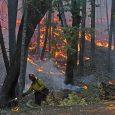 Some Taylor Creek evacuations lowered