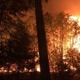 Hugo Road Fire 45% contained