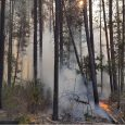 Klamath County wildfire holds steady at 25 acres