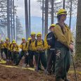 Santiam Park Fire 100% lined
