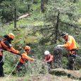 A man falls to his death while hiking a trail near Ashland