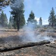 Ward Fire flare-ups reported due to recent dry weather