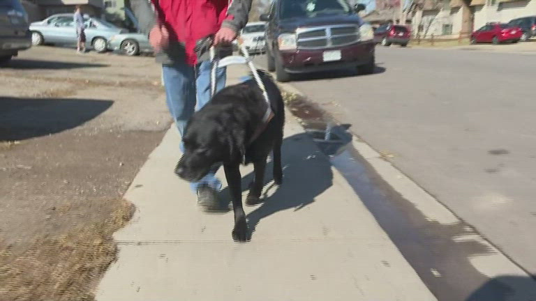 Fake service animals are a growing issue for the truly disabled - KOBI-TV NBC5 / KOTI-TV NBC2