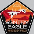 Sentry Eagle 2020 grounded