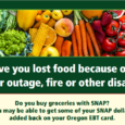SNAP recipients affected by wildfires may be eligible for replacement benefits